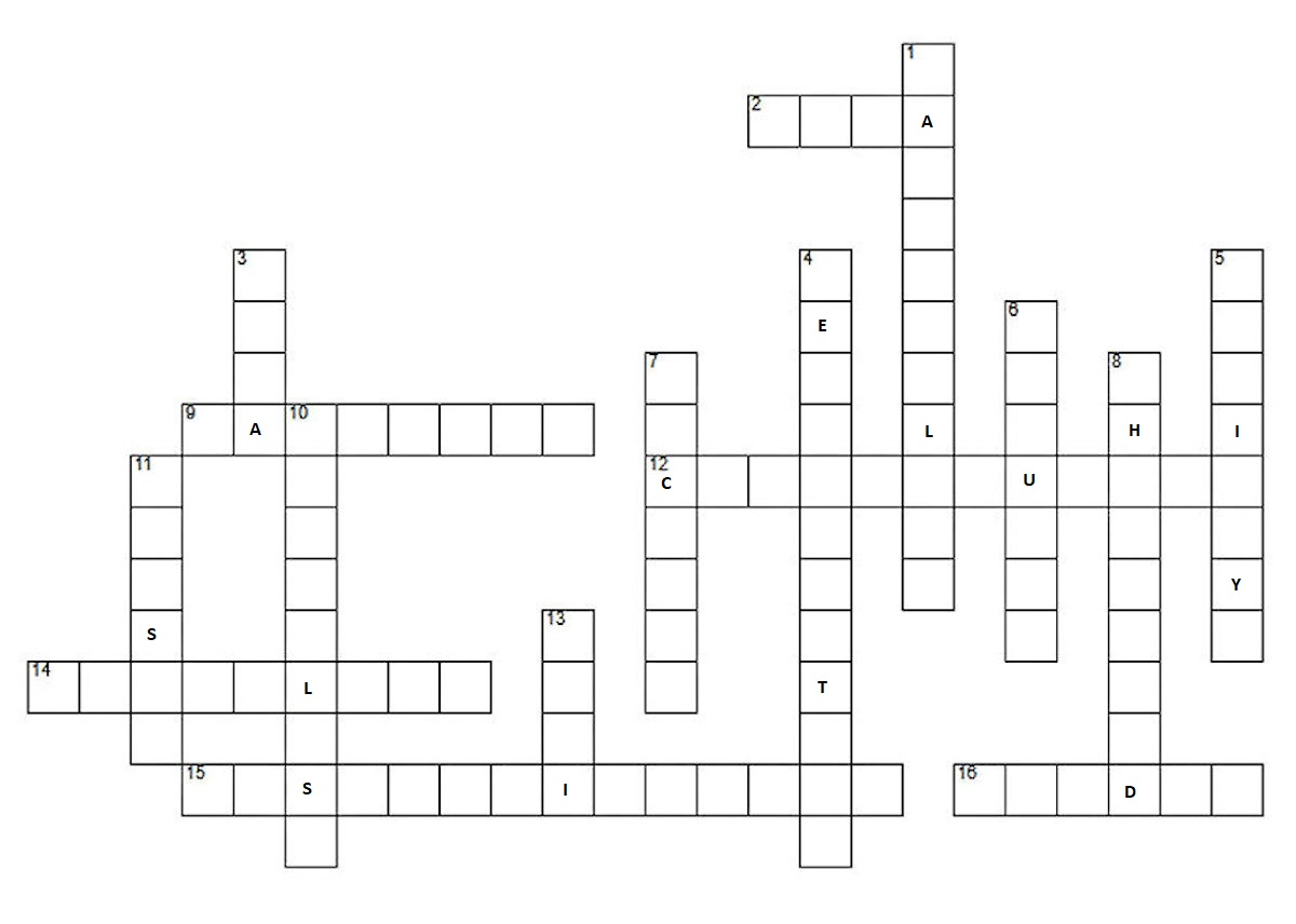 Crossword Puzzle Learning About Statelessness